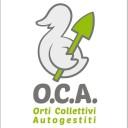 avatar for Orti Collettivi Autogestiti