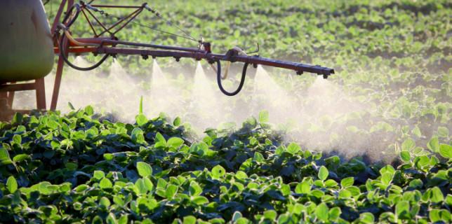 pesiticidi
