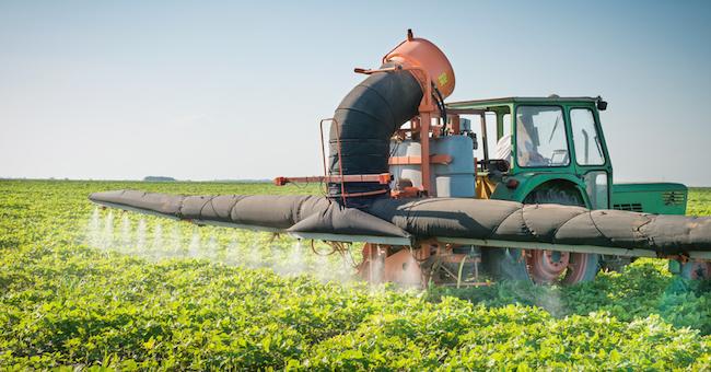 I pesticidi che mangiamo e cosa ci sta dietro