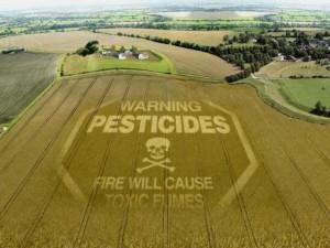Risultati immagini per Morire di  Pesticidi