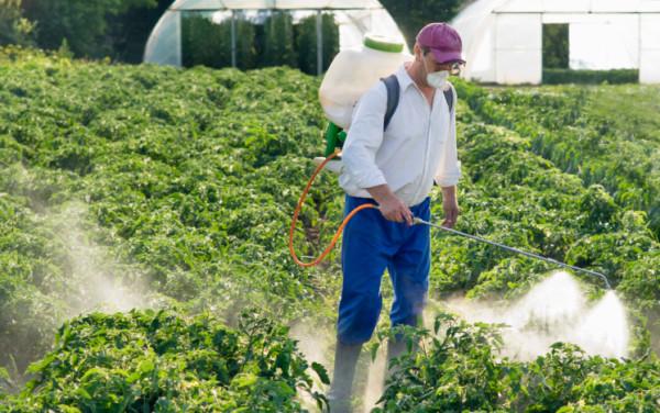 Arno invaso dai pesticidi, come il 90% dei fiumi toscani analizzati