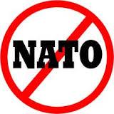 avatar for No Nato Firenze