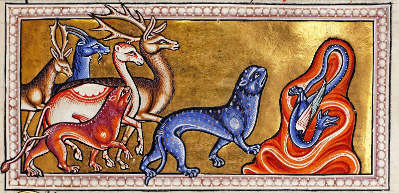 L'aeroporto di Firenze e il lupo, il gatto, la volpe e lo struzzo