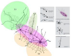 mappa 3 rete viaria