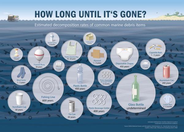 """Serve chiarezza sui """"pesci alla plastica"""" della costa toscana"""