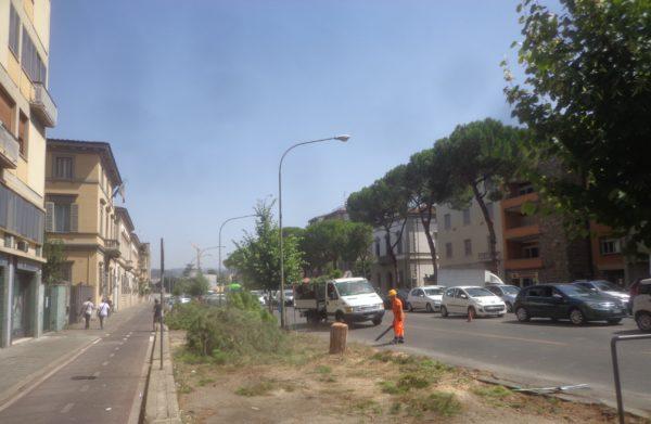 Selvicoltura difensiva a Firenze