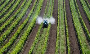 Pesticidi nelle acque e Agenzie europee di (non) controllo