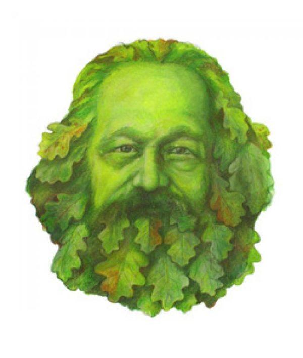 Per una nostra sintesi dei contributi di analisi intorno all'ecologia politica