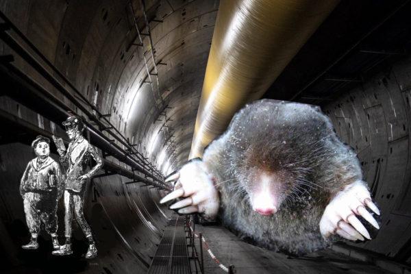 """""""Firenze è la città che scaviamo"""". Ritrovata nel tunnel TAV la Battaglia d'Anghiari"""