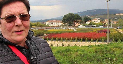Il Tg3 nei vivai di Pistoia: la Regione Toscana consente l'uso di pesticidi che avvelenano le acque