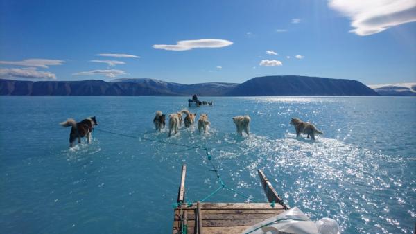 Crisi climatica, o crisi del Sistema