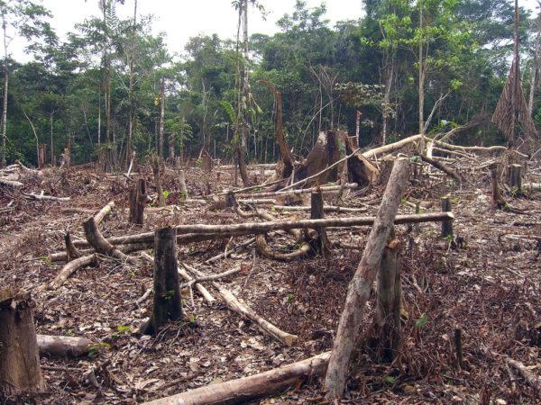La crisi dell'agricoltura e del clima
