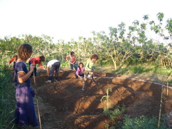 Sostieni l'agricoltura contadina toscana: firma la petizione